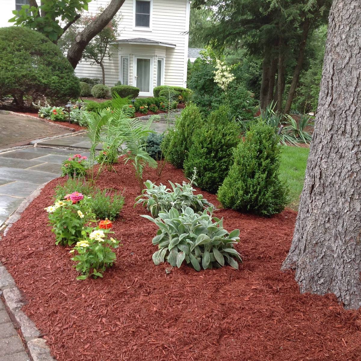 Lawn Service And Landscape: Whitetail Landscaping And Tree Service